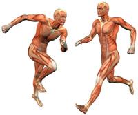 Hardloop blessures – hoe voorkom je hardloopblessures?