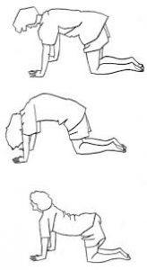 lage rug oefening 3